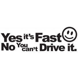YES ITS FAST......