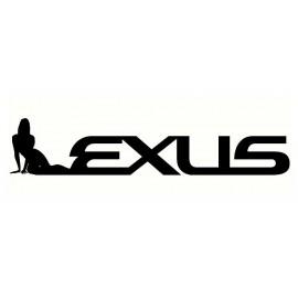 Lexus tarra