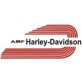 HARLEY DAVIDSON /TANKIN TARRAT