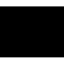 CHAPARRAL SARJA